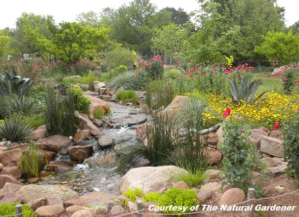 The Natural Gardener Staff Is Always Knowledgeable And Friendly, Recently  Helping Me With An Interview For One Of My Articles For The Austin American  ...