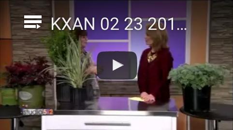 Dianas-Designs-KXAN-Gardening-Landscaping-Austin-Video