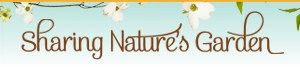 dianas-designs-sharing-natures-garden-blog-post-austin-texas