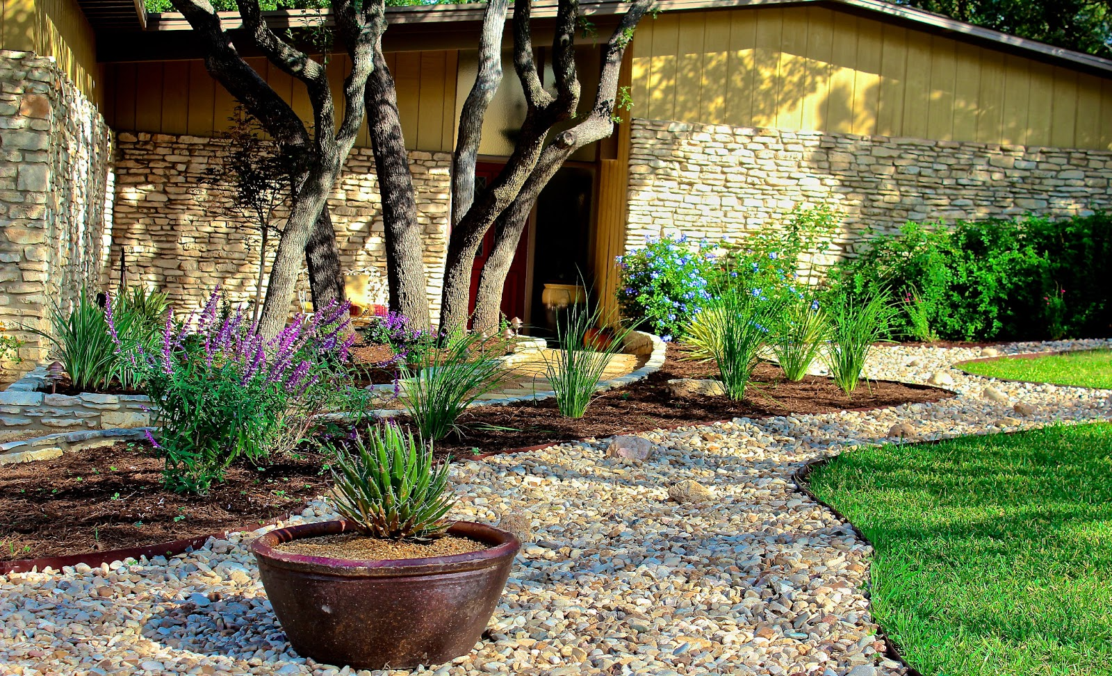 Reduce grass diana 39 s designs austin for Dry scape landscaping