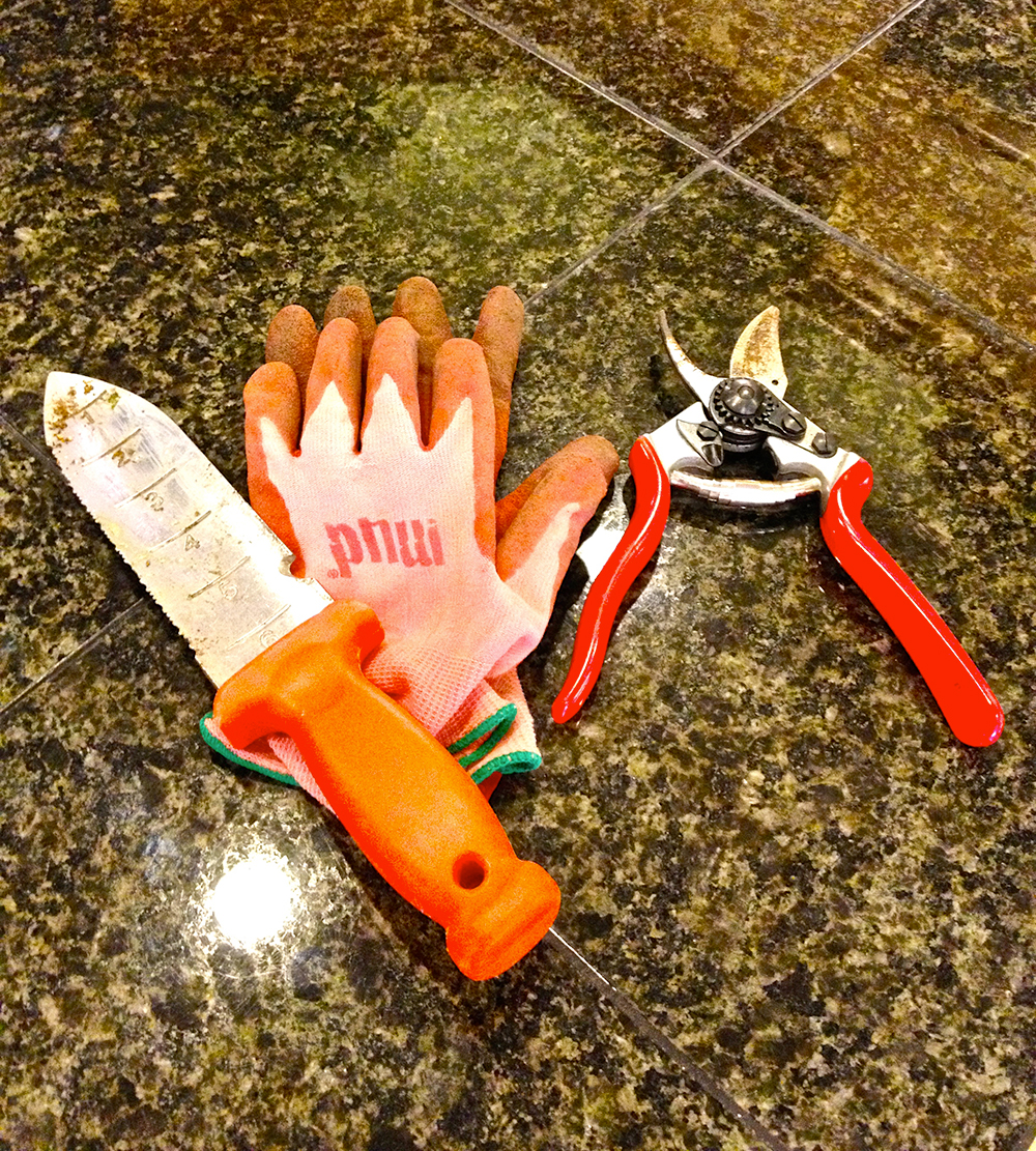 caring-for-your-gardening-tools-implements