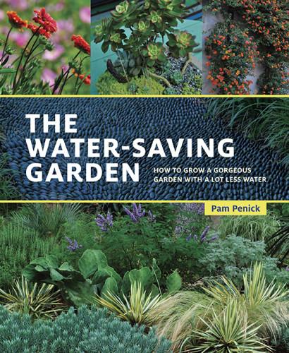 pam-penick-water-saving-garden-book-austin-garden-blog-