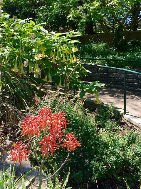 Zilker Garden Festival Is A Must See Event Diana 39 S