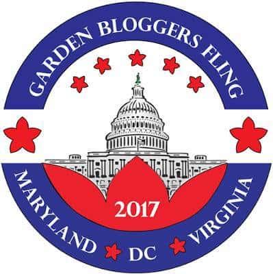 garden-bloggers-2017-fling