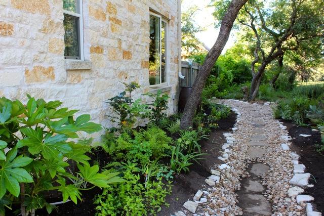 Loving My Lush Central Texas Garden Diana S Designs Austin
