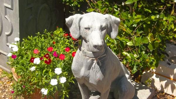 dog sculpture in garden