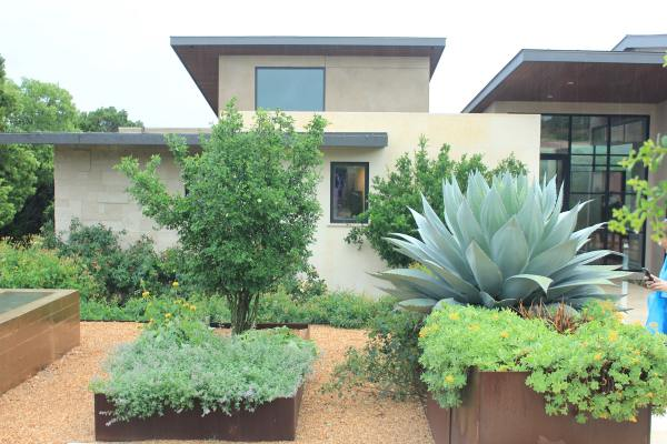 Contemporary, Xeric Garden Showcased At Garden Bloggers Fling