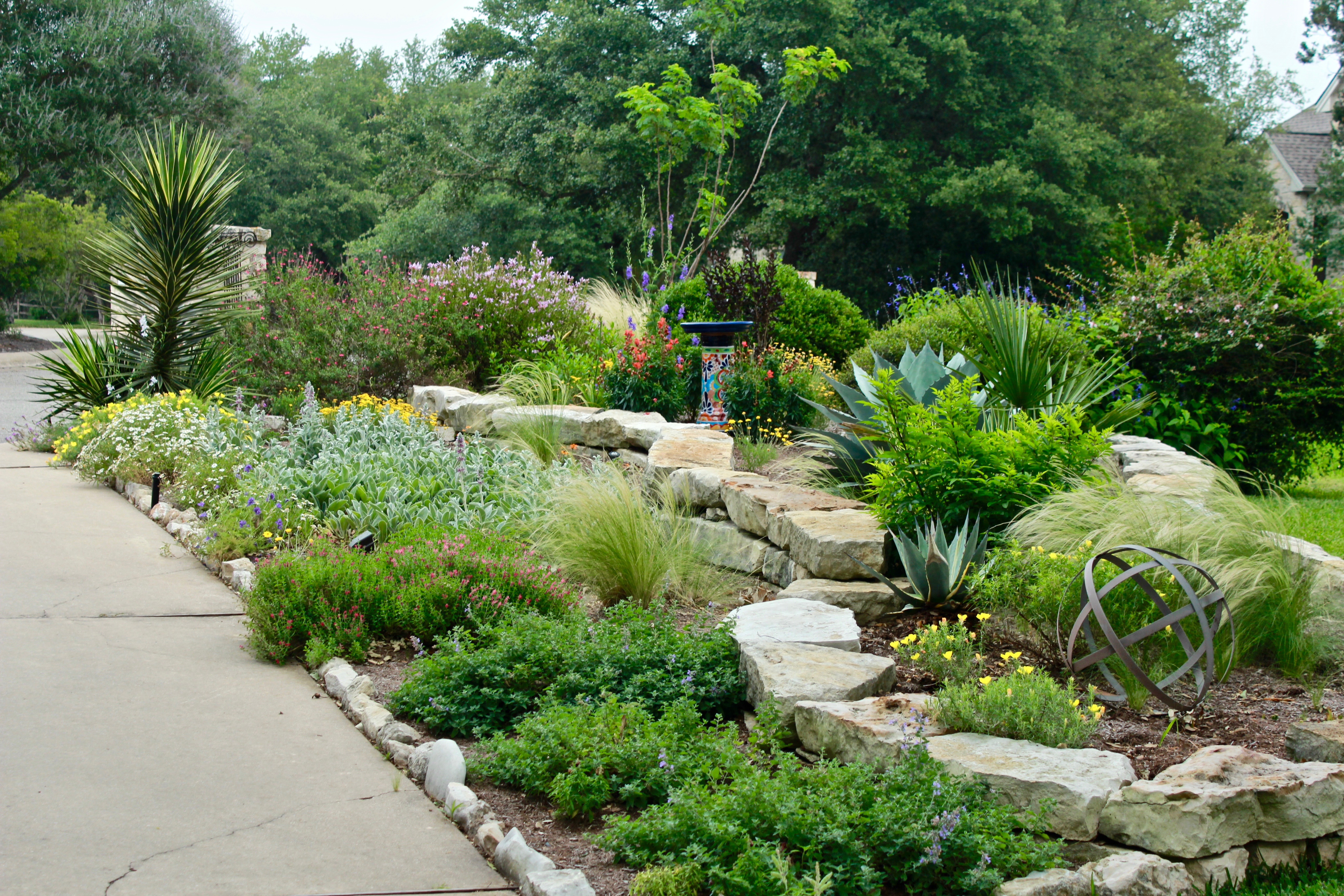 Creating A New Garden And Dog Friendly Landscape Diana S Designs